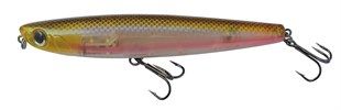 DTD Dog 90 mm Hologram Trasparent Natural Smelt